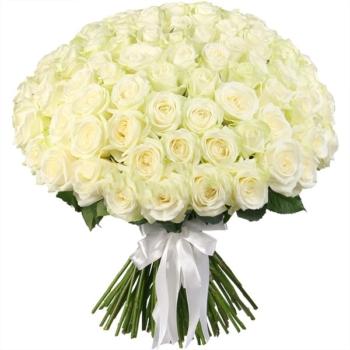 Купить 101 розу в Мурманске