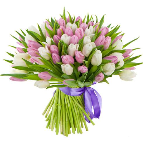 Тюльпаны микс 5